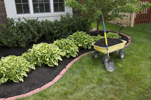 SuperEasy Tips For Landscaping Your Yard EBay - Basic landscaping tips