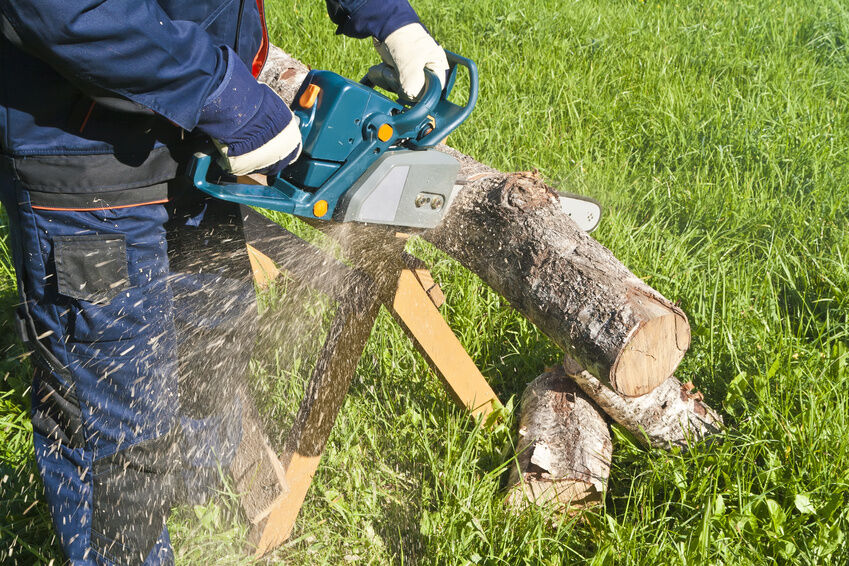 What to look for When Buying a Used Petrol Chainsaw