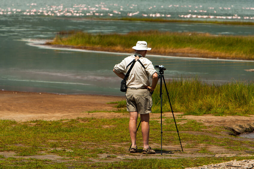 Must-Have Tools for Bird Watching