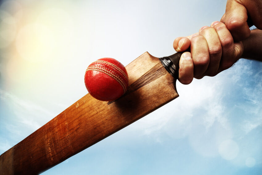 Woodworm Cricket Bat Buying Guide