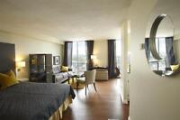 All-inclusive bachelor suite, heart of downtown, 2 blocks to LTR