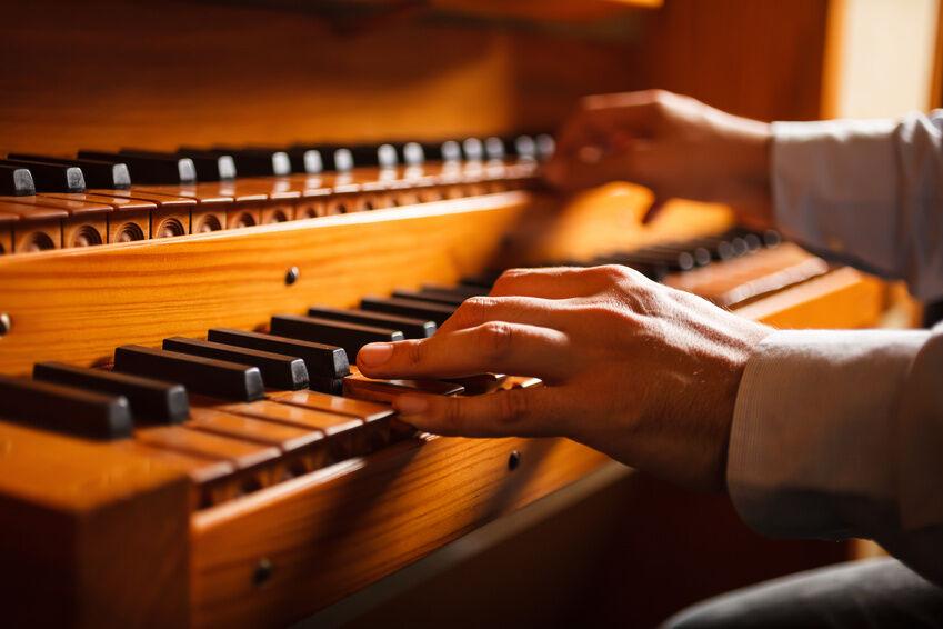 Top 3 Organ Designs