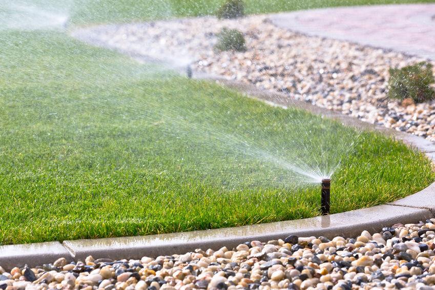 Top 10 Tips for Watering Your Garden