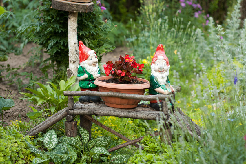 Your Guide to Buying an Adorable Garden Gnome