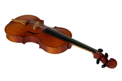 Your Guide to Buying a Used Stentor Violin