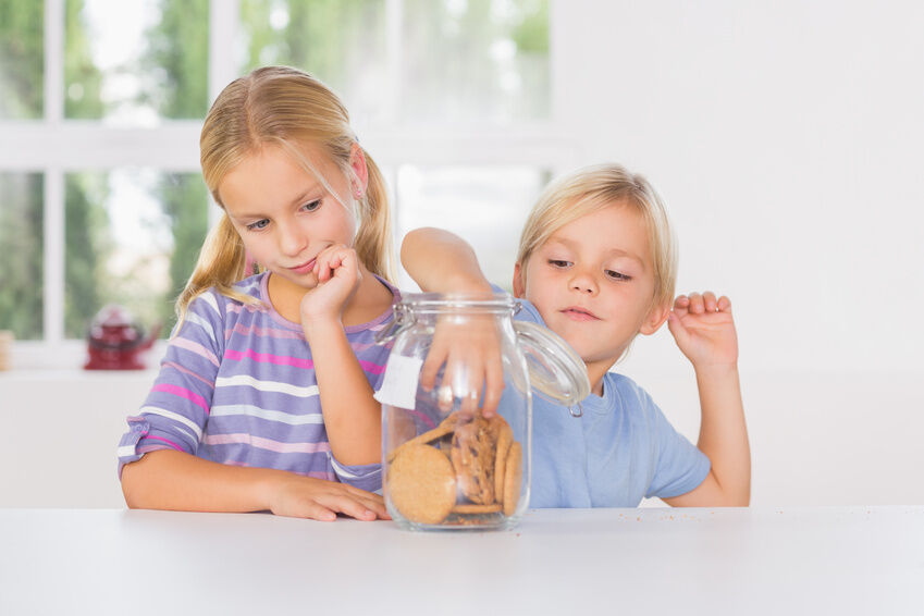 Cookie Jar Buying Guide