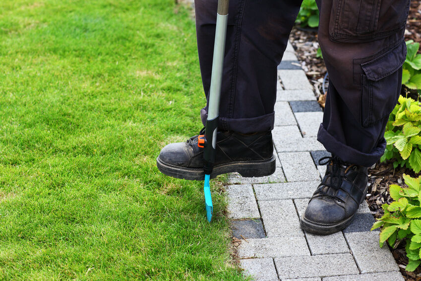 The Right Border How To Correctly Install Lawn Edging Ebay