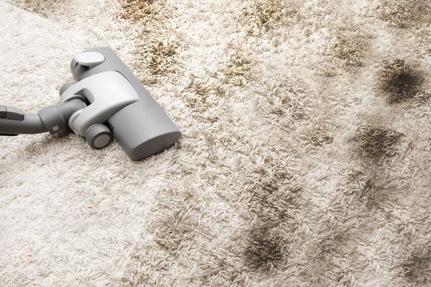Cutting Through the Fluff: Carpet Cleaning Methods Explained