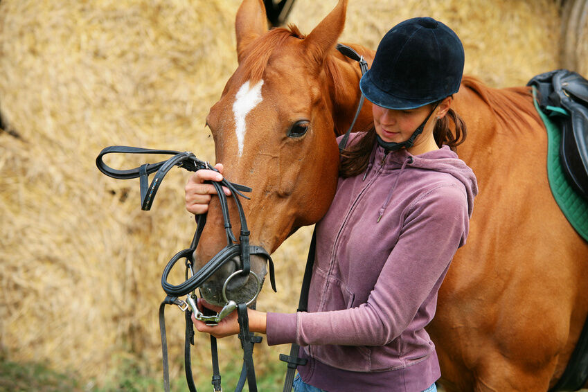 How to Fit a Bridle