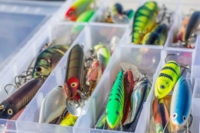 the different types of fishing lures | ebay, Hard Baits