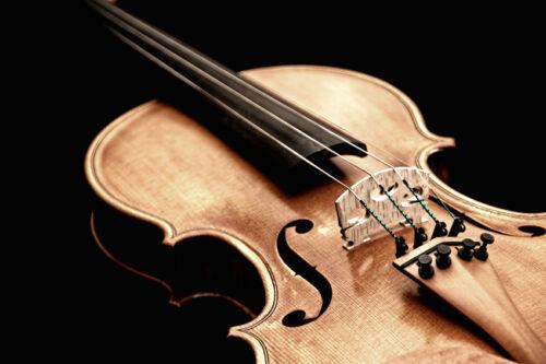 Stradivari und Guarini – warum historische Violinen aus Italien so wertvoll sind