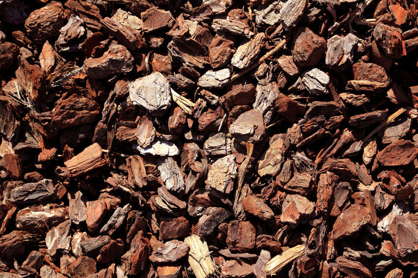 Ideas for Using Bark Chips on Your Allotment