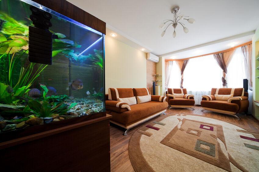 Welche Leuchtmittel eignen sich für die Aquarium-Beleuchtung?