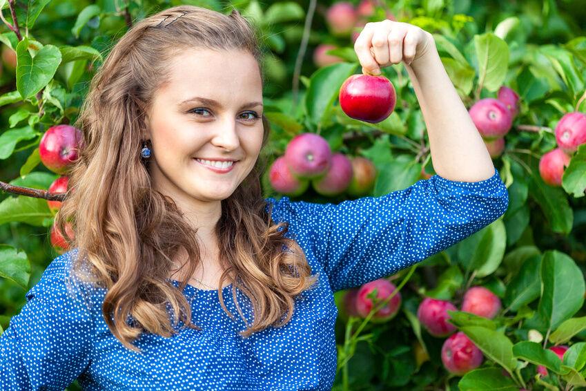 gärtnern für anfänger: welches obst lässt sich einfach anbauen? | ebay, Gartengerate ideen