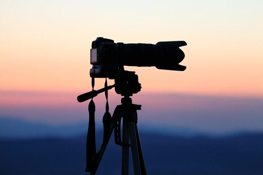 Warum in die Ferne schweifen: Mit dem Super-Tele-Nikon-Objektiv Motive dicht ranholen