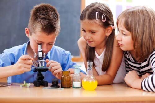 Der beste Weg, Ihr Kind an biologische Themen heranzuführen