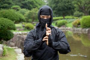 Top 10 Ninja Movies