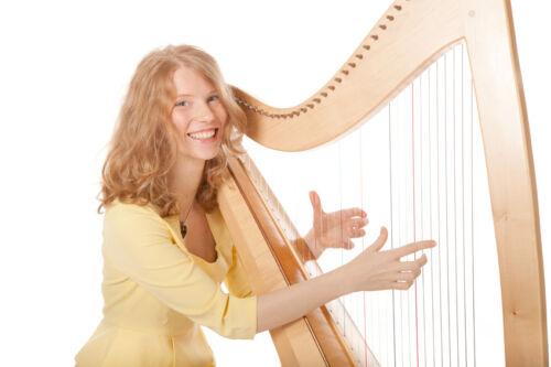 Streich- & Zupfinstrumente gebraucht online kaufen - ein Ratgeber