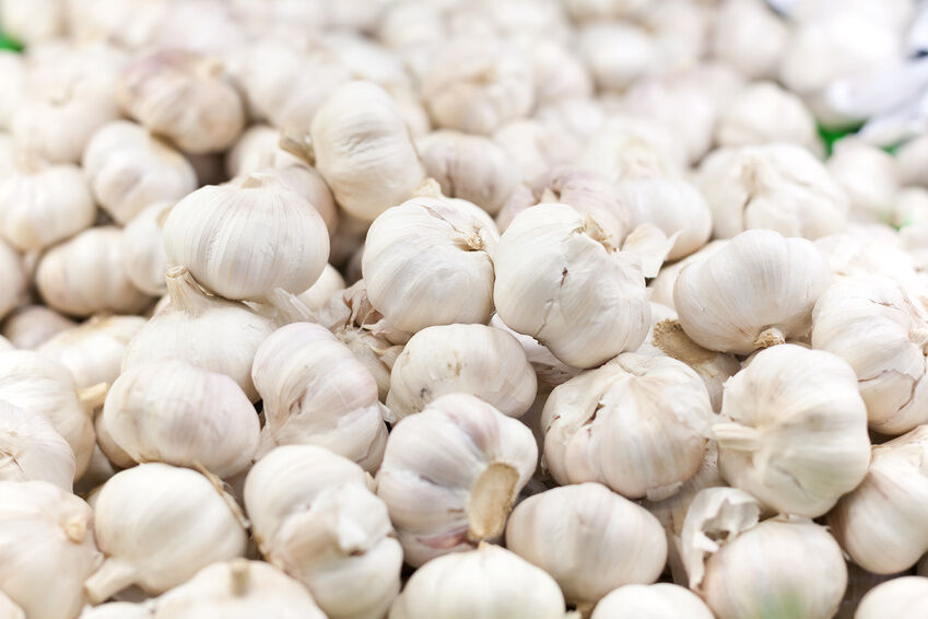 How to Store Your Garlic After Harvest
