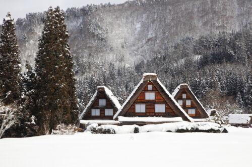 Ferien im natürlichen Ambiente: 10 beliebte Nurdachhäuser-Siedlungen in Deutschland