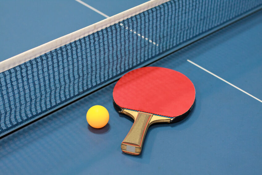 Top 10 best table tennis blades ebay for 10 rules of table tennis