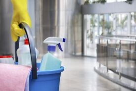 Domestic , Commercial and Carpet Cleaning Service
