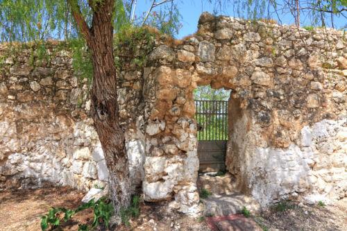 Pflegetipps: So bleiben Sichtschutzzäune aus Naturmaterialien lange schön