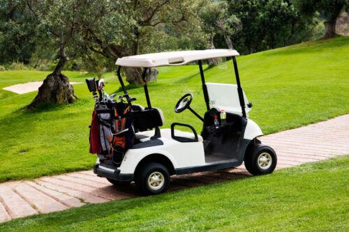 Tipps zum Kauf von Golfwagen und Caddys bei eBay