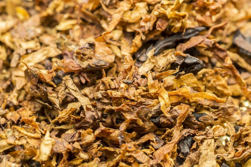 Best Grinders for Grinding Tobacco