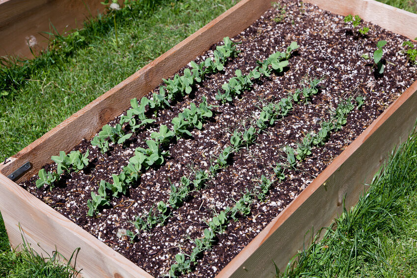 How to Make Garden Soil for Raised Beds eBay
