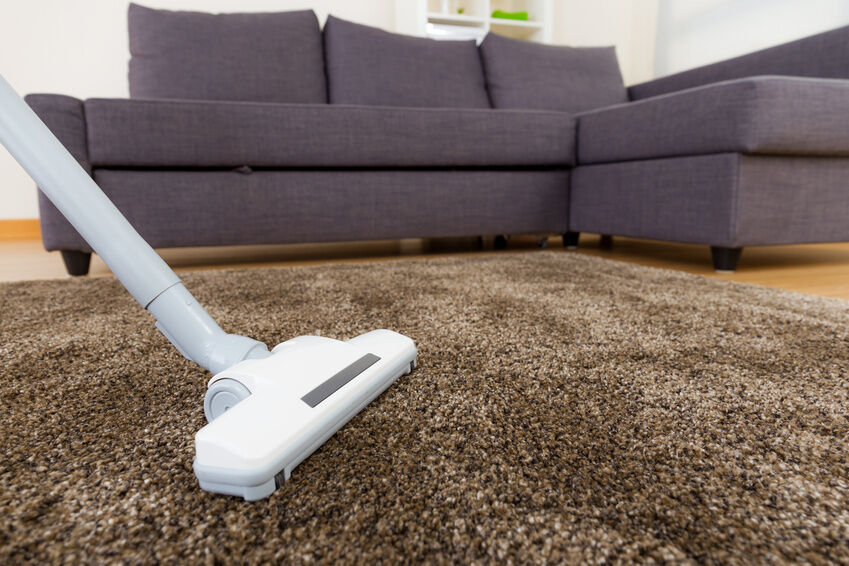 Top 10 Vacuum Cleaners For Pet Hair Ebay