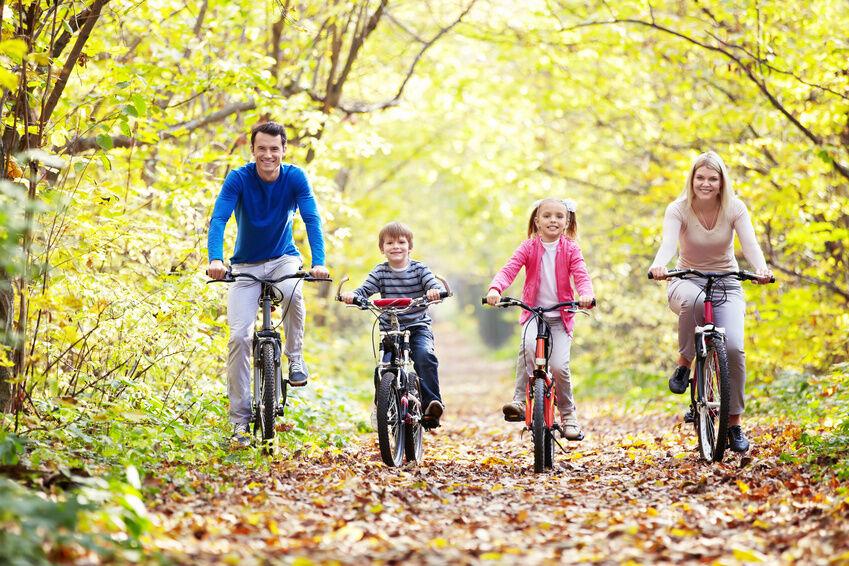 Welche verschiedenen Zoll-Größen gibt es für Fahrräder?
