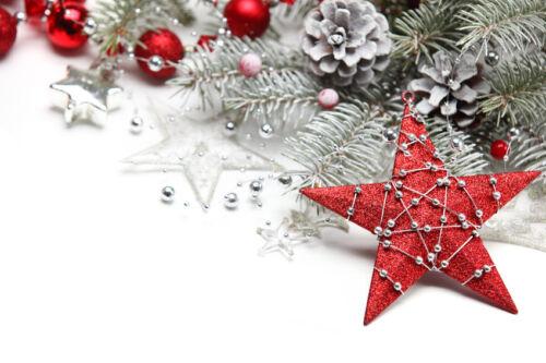 So finden Sie die schönsten Advents- und Weihnachtssterne auf eBay