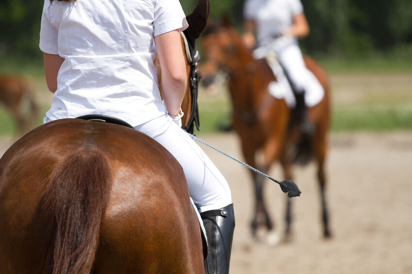 Top 3 Brands of Riding Whips