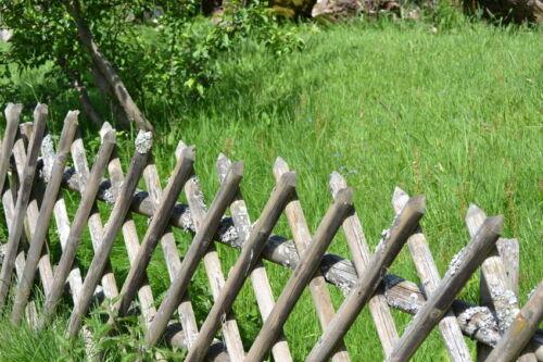 Windschutz, Begrenzung & Co: 10 Vorteile eines Jägerzauns