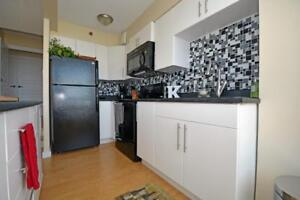 Fully Reno'd 1 Bdrm Across from the Public Gardens.
