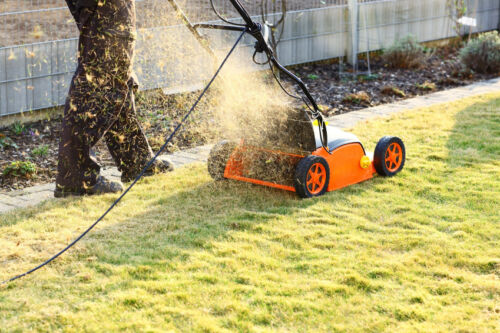 Top Considerations for Buying an Aerator