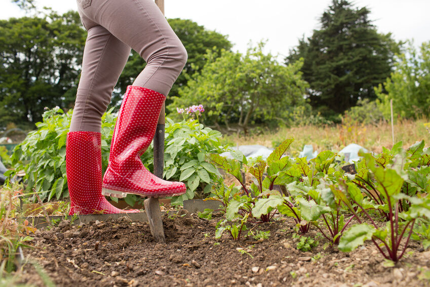 The Complete Wellington Boot Buying Guide