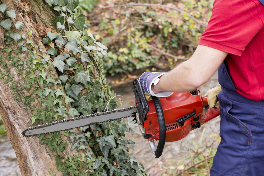 Advantages of Petrol Chainsaws