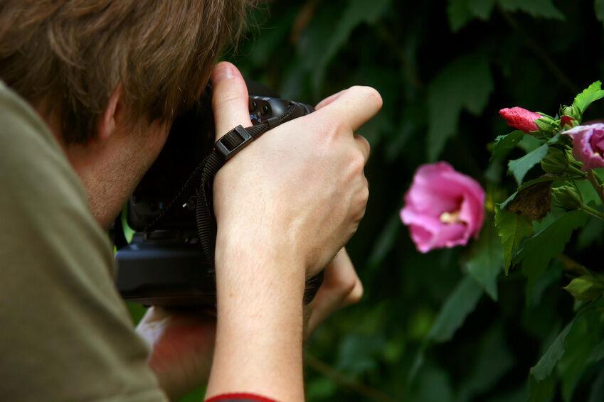 Tipps und Tricks vom Fachmann - mit Makro-Objektiven richtig fotografieren