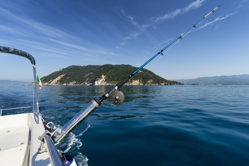 Your Guide to Big Game Sea Fishing Gear