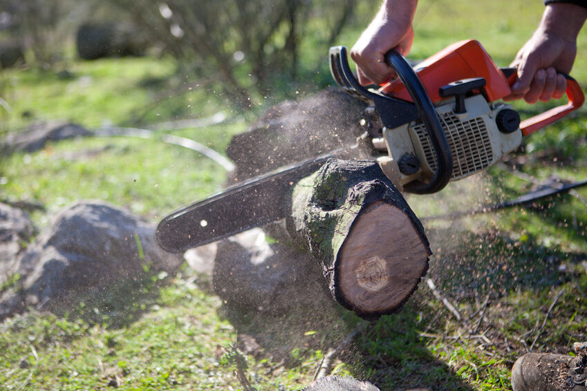 How to replace the chain on a chainsaw ebay how to replace the chain on a chainsaw keyboard keysfo Image collections