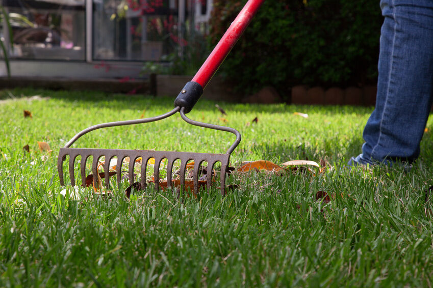 Top 10 Landscaping Tools | EBay