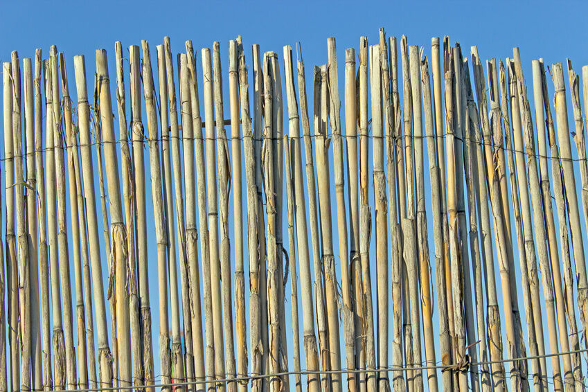 Your Guide to Buying Bamboo Screening