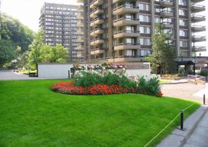 4 1/2 apartment near HEC/UdeM/Poly/Metro Cote des Neiges