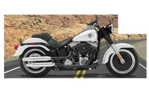 Harley Davidson Softail Fat Boy lo