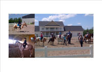 Summer Horseback riding camp minutes to Barrie and Orillia