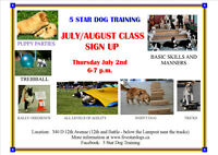 JULY/AUGUST DOG TRAINING CLASSES