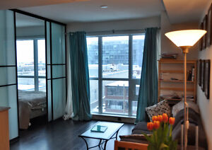 Furnished 1-bedroom condo in Downtown (utilities included)