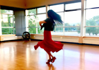 Ballroom and Latin Classes - From Beginners to Gold Level